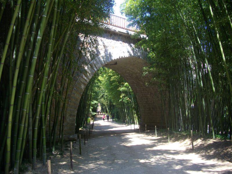 bambouseraie005.jpg