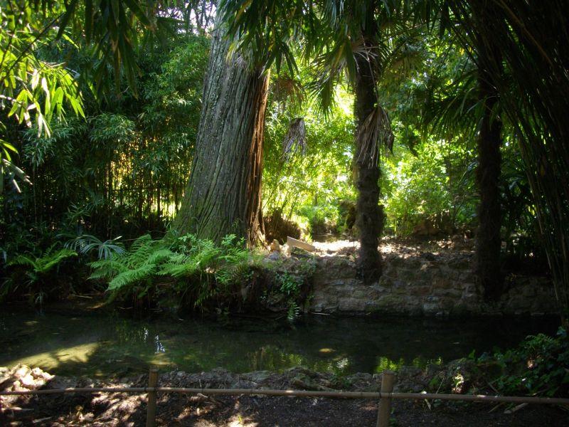 bambouseraie139.jpg